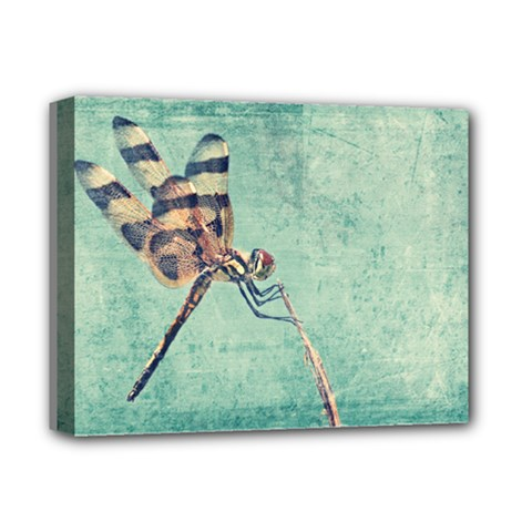 Dragonfly Deluxe Canvas 14  x 11  (Stretched) by heathergreen