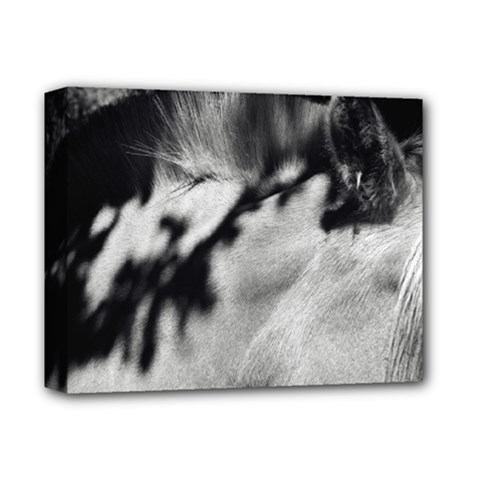 Horse Deluxe Canvas 14  X 11  (stretched) by artposters