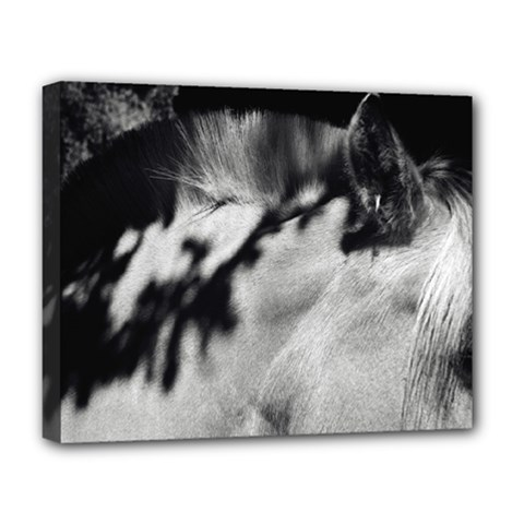 Horse Deluxe Canvas 20  X 16  (stretched) by artposters