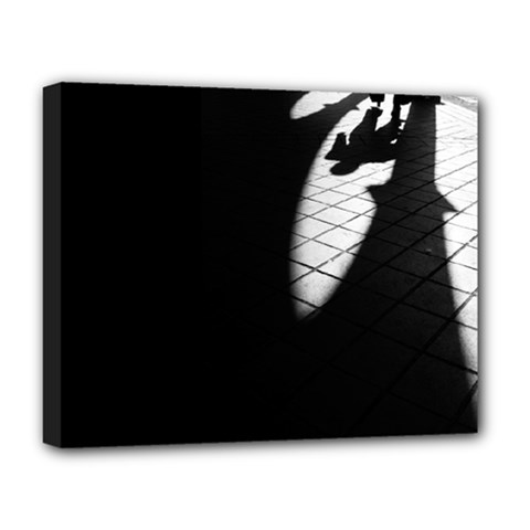 shadows Deluxe Canvas 20  x 16  (Stretched)