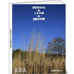 Japan Trip 2013 - 9x12 Deluxe Photo Book (20 pages)
