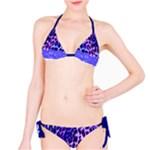 Leopard Bikini Blue Purple Lace - Bikini Set