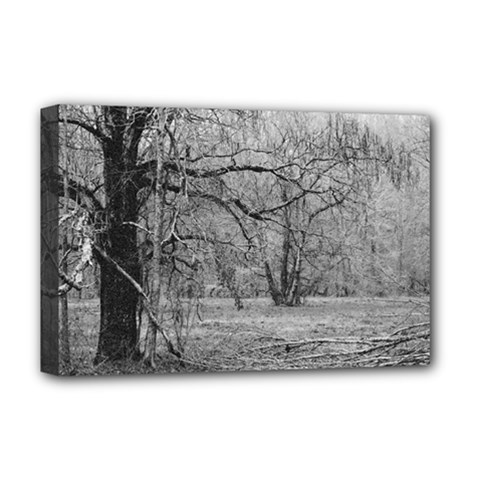 Black And White Forest Deluxe Canvas 18  X 12  (stretched) by Elanga