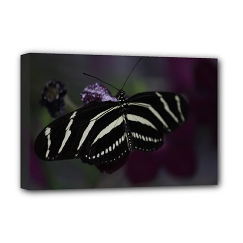 Butterfly 059 001 Deluxe Canvas 18  x 12  (Framed)