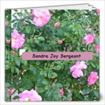 Sandra Joy Sergeant - 12x12 Photo Book (20 pages)