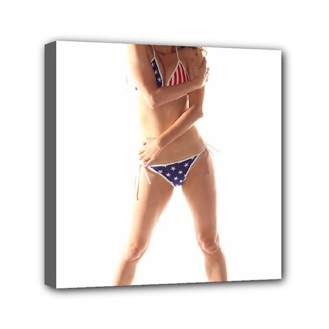 Usa Girl Mini Canvas 6  X 6  (framed) by hlehnerer