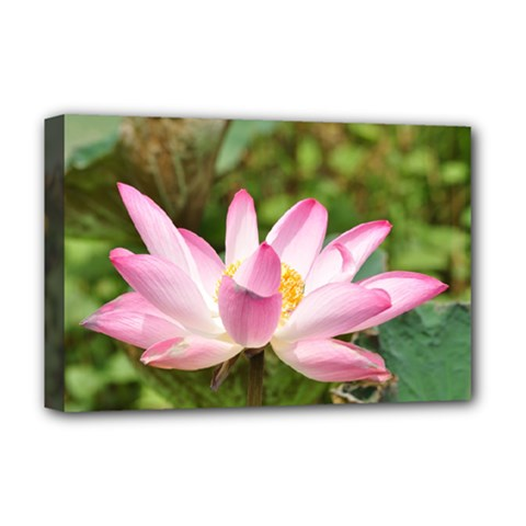 A Pink Lotus Deluxe Canvas 18  X 12  (framed) by natureinmalaysia