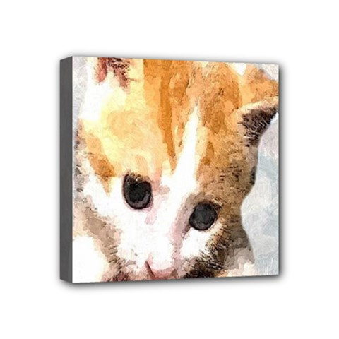 Sweet Face ;) Mini Canvas 4  X 4  (framed) by mysticalimages