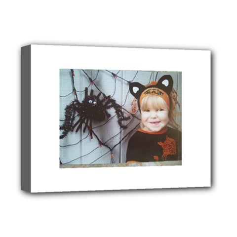 Spider Baby Deluxe Canvas 16  x 12  (Framed)  by tammystotesandtreasures