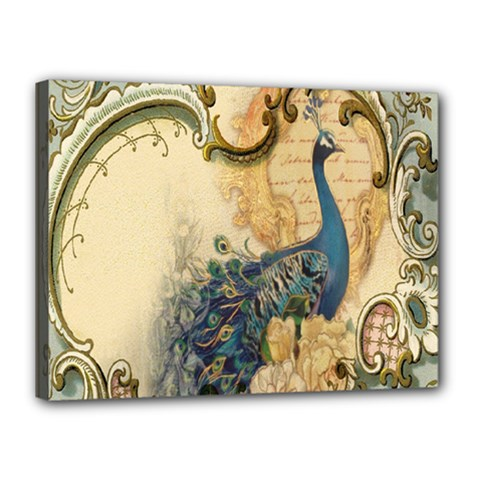 Victorian Swirls Peacock Floral Paris Decor Canvas 16  X 12  (framed) by chicelegantboutique