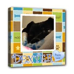 dexter2 - Mini Canvas 8  x 8  (Stretched)