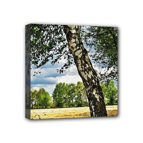 Trees Mini Canvas 4  X 4  (framed) by Siebenhuehner