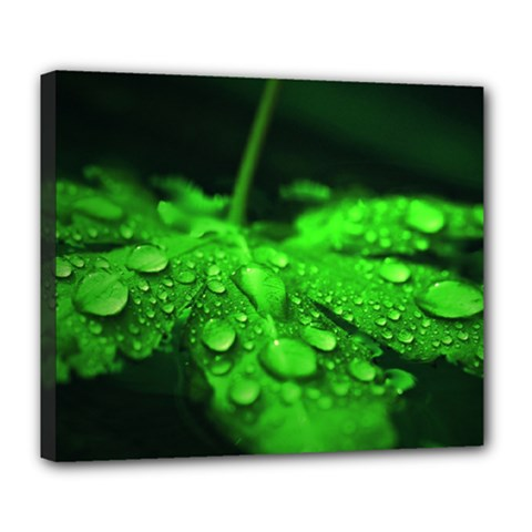 Waterdrops Deluxe Canvas 24  X 20  (framed) by Siebenhuehner