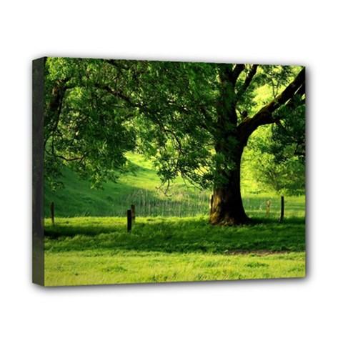 Trees Canvas 10  x 8  (Framed) by Siebenhuehner