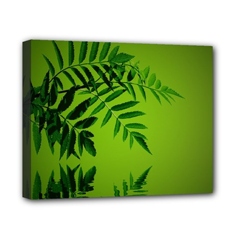 Leaf Canvas 10  X 8  (framed) by Siebenhuehner