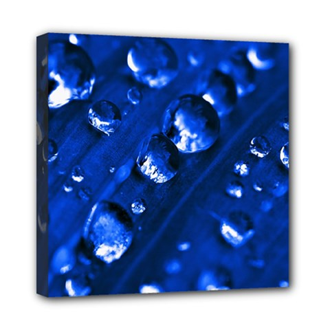 Waterdrops Mini Canvas 8  X 8  (framed)