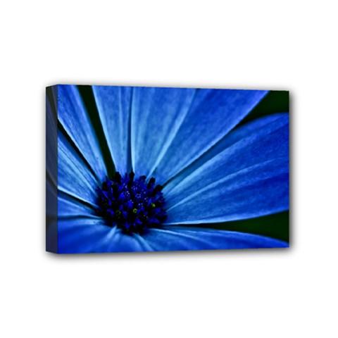 Flower Mini Canvas 6  X 4  (framed) by Siebenhuehner