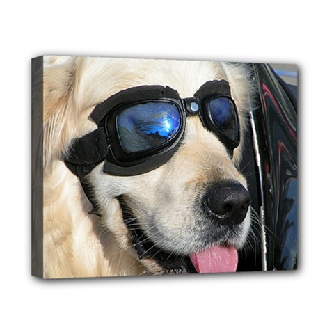 Cool Dog  Canvas 10  X 8  (framed) by Siebenhuehner