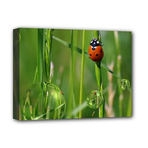 Ladybird Deluxe Canvas 16  X 12  (framed)  by Siebenhuehner