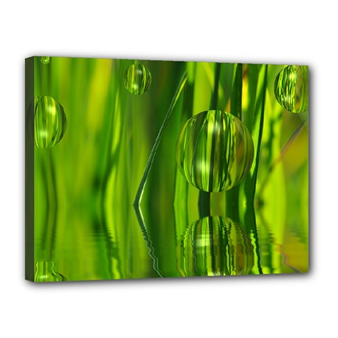 Green Bubbles  Canvas 16  X 12  (framed) by Siebenhuehner