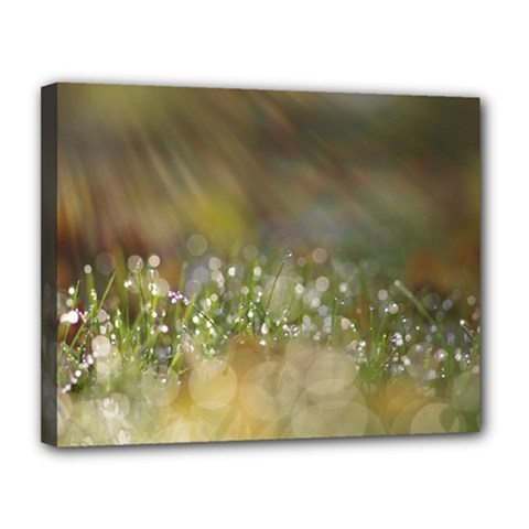 Sundrops Canvas 14  X 11  (framed) by Siebenhuehner