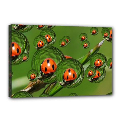 Ladybird Canvas 18  X 12  (framed) by Siebenhuehner