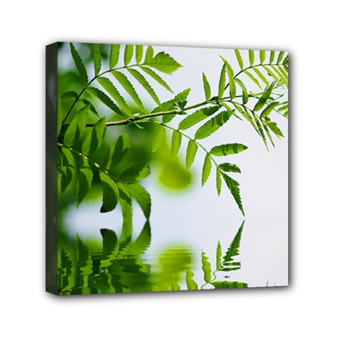 Leafs With Waterreflection Mini Canvas 6  X 6  (framed) by Siebenhuehner