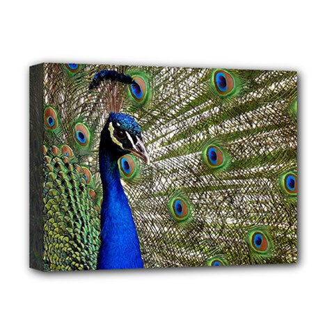 Peacock Deluxe Canvas 16  X 12  (framed)  by Siebenhuehner