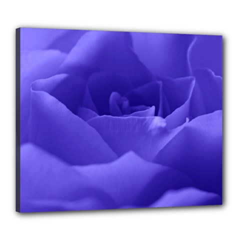 Rose Canvas 24  X 20  (framed) by Siebenhuehner