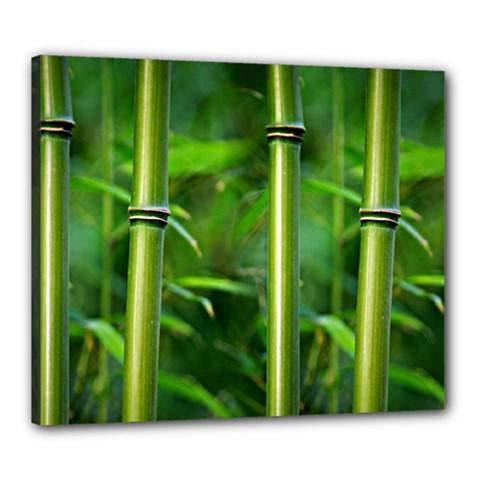 Bamboo Canvas 24  X 20  (framed) by Siebenhuehner