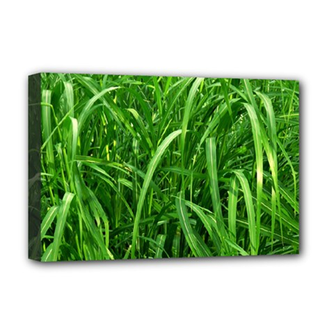 Grass Deluxe Canvas 18  x 12  (Framed)
