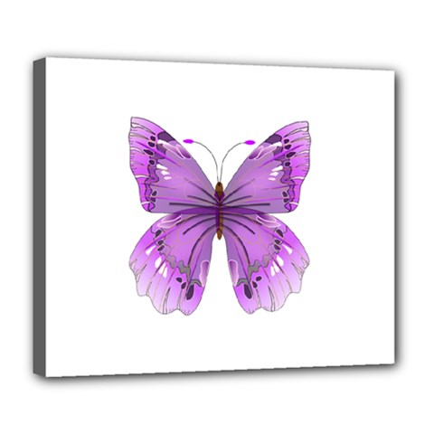 Purple Awareness Butterfly Deluxe Canvas 24  X 20  (framed) by FunWithFibro