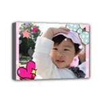Satomi 2 - Mini Canvas 7  x 5  (Stretched)
