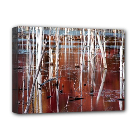 Automn Swamp Deluxe Canvas 16  X 12  (framed)  by cgar