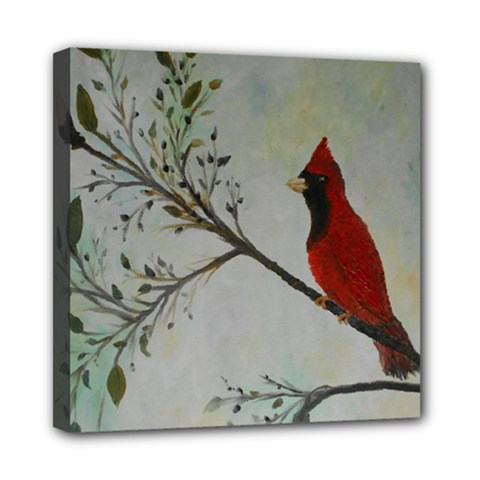 Sweet Red Cardinal Mini Canvas 8  X 8  (framed) by rokinronda