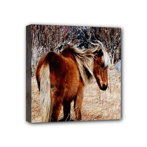 Pretty Pony Mini Canvas 4  x 4  (Framed) by Rbrendes