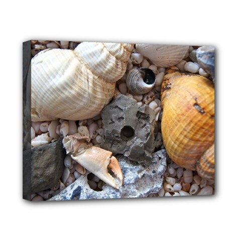 Beach Treasures Canvas 10  X 8  (framed) by StuffOrSomething