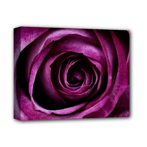 Deep Purple Rose Deluxe Canvas 14  x 11  (Framed) by Colorfulart23