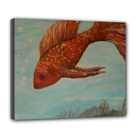 Gold Fish Deluxe Canvas 24  X 20  (framed) by rokinronda