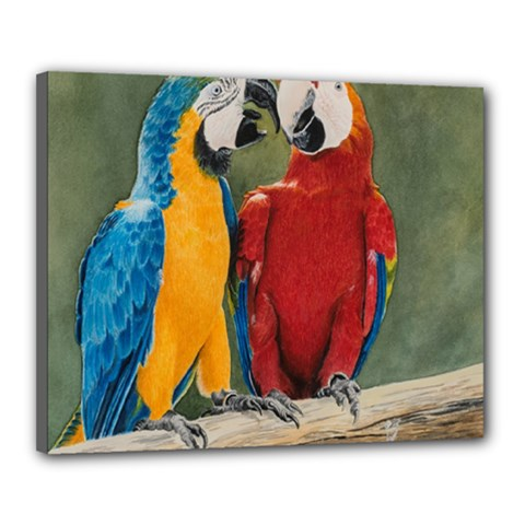 Feathered Friends Canvas 20  X 16  (framed) by TonyaButcher