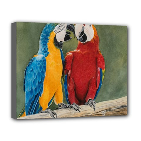 Feathered Friends Deluxe Canvas 20  X 16  (framed) by TonyaButcher