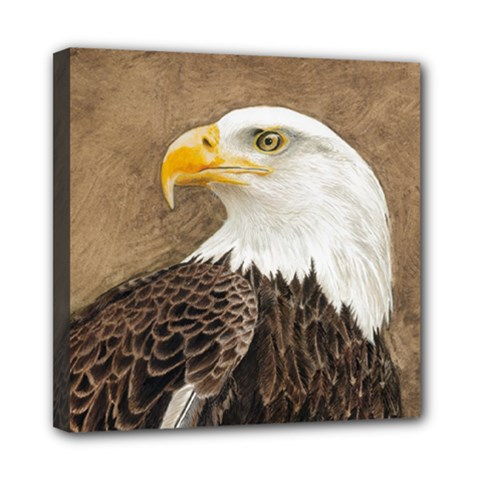 Eagle Mini Canvas 8  X 8  (framed) by TonyaButcher