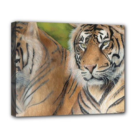 Soft Protection Deluxe Canvas 20  X 16  (framed) by TonyaButcher