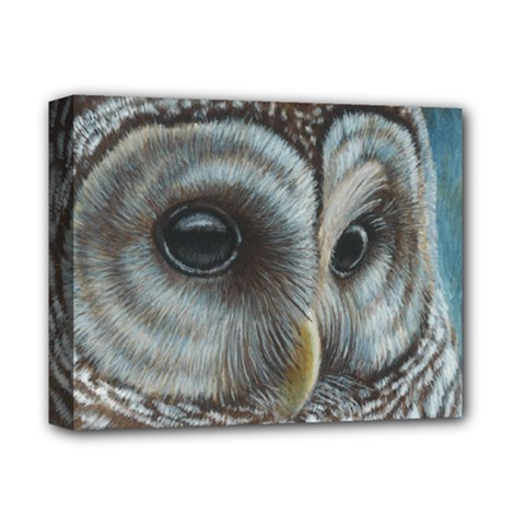 Barred Owl Deluxe Canvas 14  x 11  (Framed) by TonyaButcher
