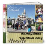 disneyland mom - 8x8 Photo Book (20 pages)