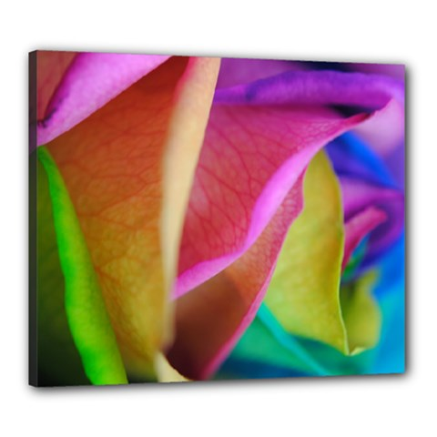 Rainbow Roses 16 Canvas 24  X 20  (framed) by bloomingvinedesign
