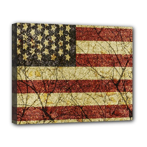 Vinatge American Roots Deluxe Canvas 20  X 16  (framed) by dflcprints
