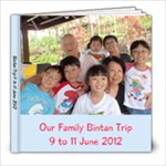 Our Bintan trip - 8x8 Photo Book (20 pages)