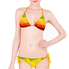 Rainbow Geometry Bikini by DigitalArtCreations