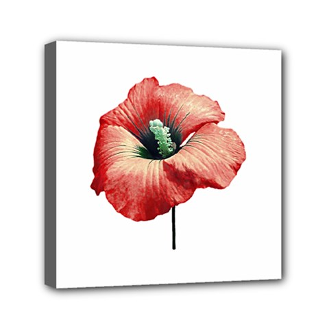 Your Flower Perfume Mini Canvas 6  X 6  (framed) by dflcprints